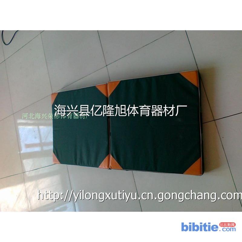 亿隆旭体育生产直销哥种规格体操垫、滑雪场防撞垫图片