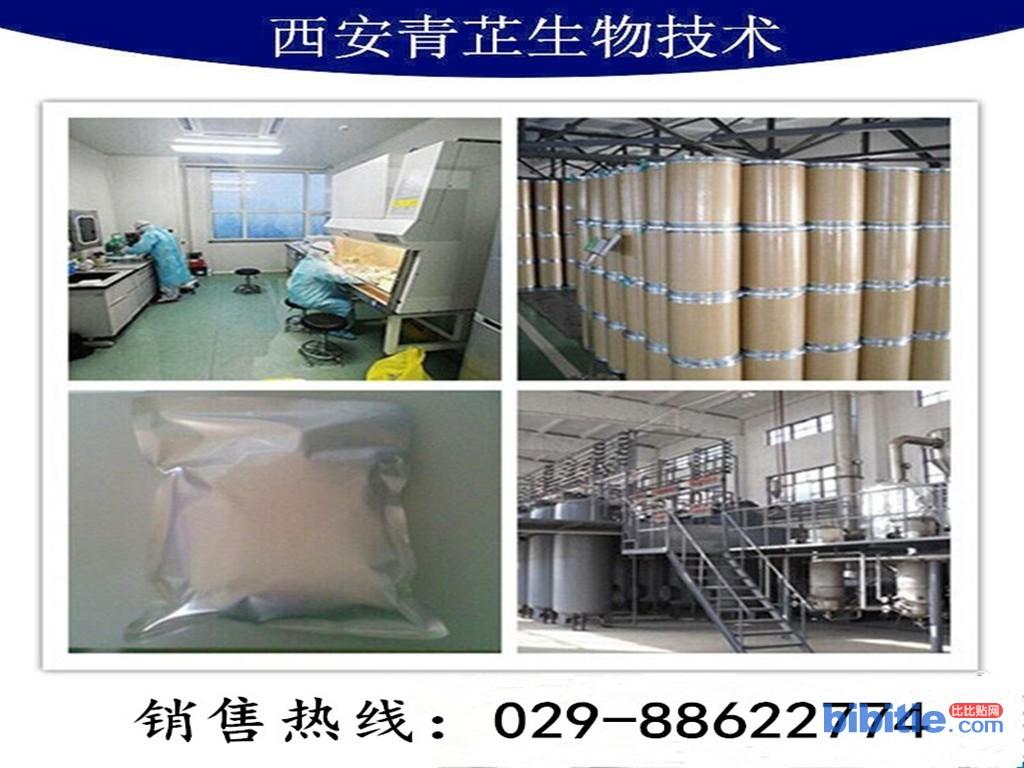 青芷生物 桑黄提取物 棕褐色粉末、厂家直销、现货供应图片