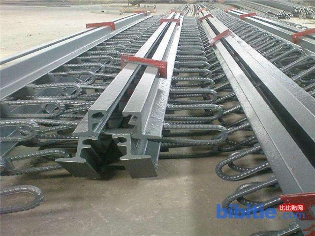 160型桥梁伸缩缝-衡水筑桥定制(在线咨询)-伸缩缝图片