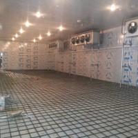 山东回收二手溴化锂机组地址冷库拆除回收方案图片