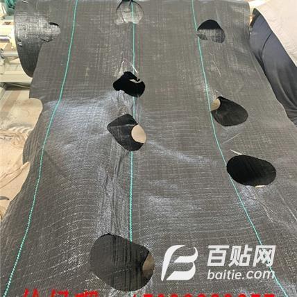 防草布打孔机生产线    编织布打孔机设备图片