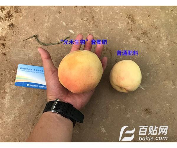 微生物拌种蘸根剂厂家北京光禾生物微生物拌种蘸根剂图片