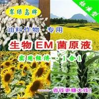 花生叶面肥怎么施 花生叶面肥的施用方法图片