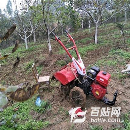 微耕机除草管理机 微耕机生产厂家 土壤耕整机械 水稻除草微耕机图片