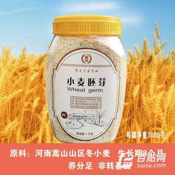 小麦胚芽小麦胚芽河南小麦胚芽天然无加工大量供应厂家批发图片