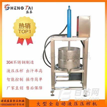 盛泰定制小型液压压榨机 果蔬液压压榨机 蔬菜压滤设备 液压压榨机图片
