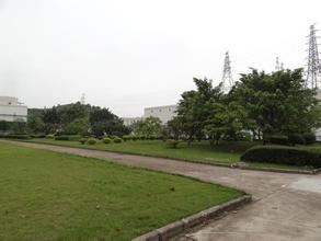 上海绿化工程去哪里能找到,硕放苗圃,无锡绿化工程承包商图片