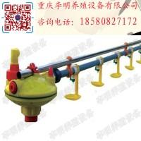 水线 养殖设备 养鸡水线 肉鸡水线 蛋鸡水线 自动饮水系统图片