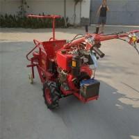 柴油自走式玉米收获机  玉米脱皮收割机图片